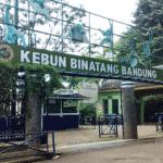 Bandung Zoo 150x150