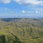 Laiwangi Wanggameti 1 150x150