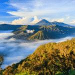 Tropical Rainforest Heritage of Sumatra 1 150x150