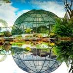 Kebun Raya Indrokilo 150x150