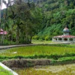 Solok Botanical Gardens 150x150