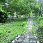Tebat Gadong Btanical Garden 1 150x150