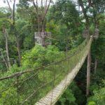 Balikpapan Botanical Garden2 150x150