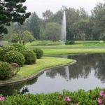 Cibodas Botanical Garden 150x150