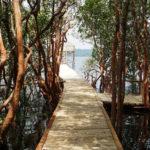 Lake Lait Botanical Garden 150x150