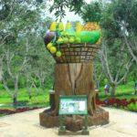 Lemor Botanical Garden2 1 150x150