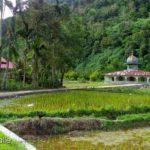 Solok Botanical Garden2 150x150