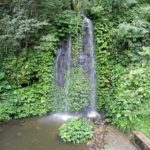 Tropical Rainforest Heritage of Sumatra 150x150
